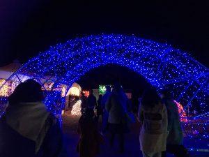 LEDライト アーチ イルミネーション まんのう公園 シエルホーム